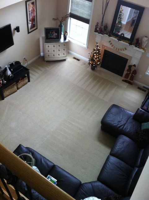 Professional-Carpet-Cleaning-Indianapolis